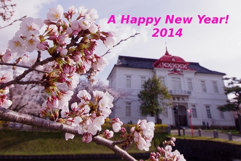 newyear2014-480.JPG
